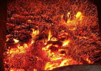 biomass-fire