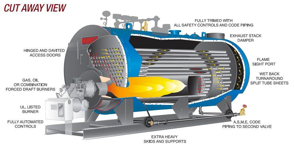 euro series cutaway
